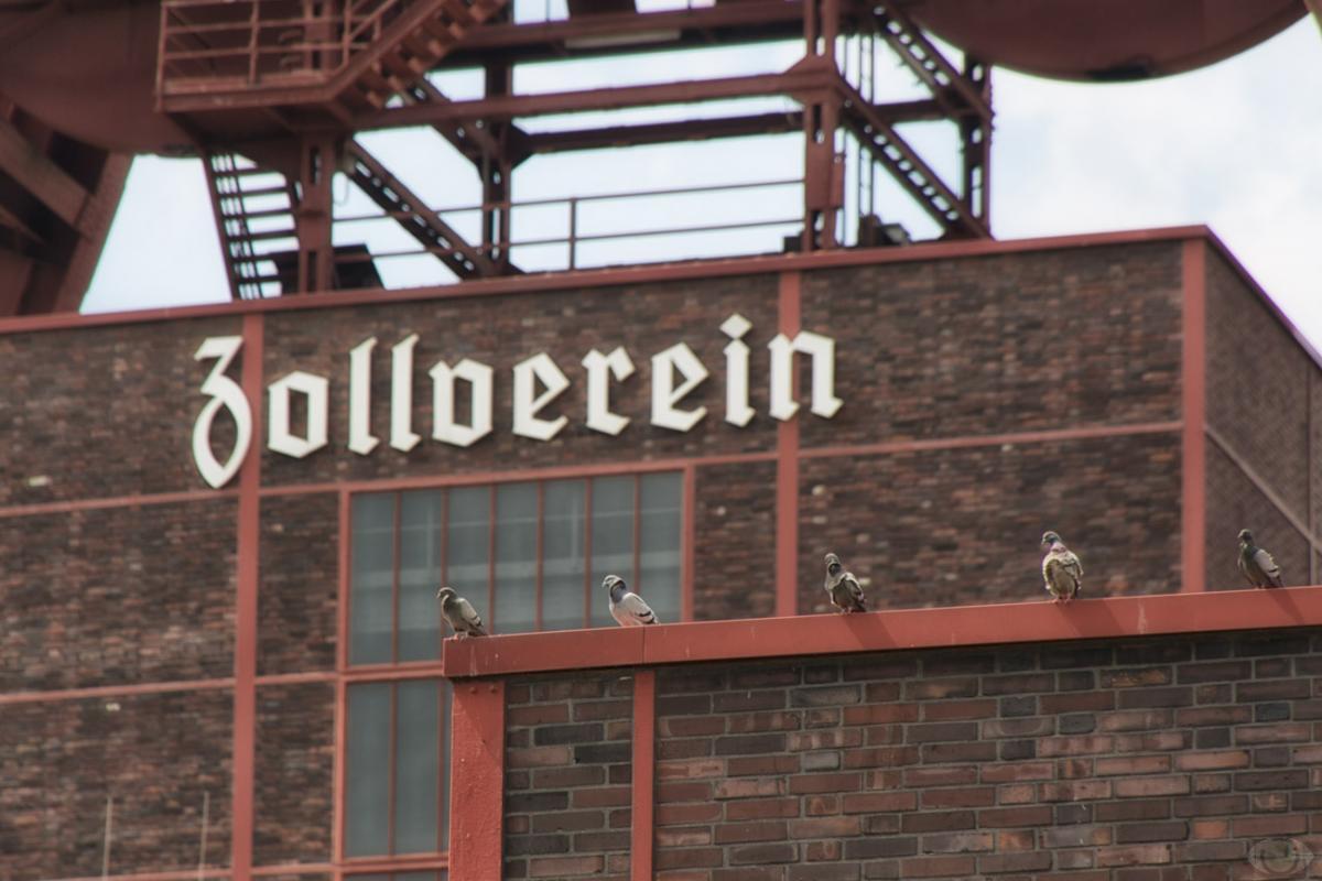 Zollverein_Image_13